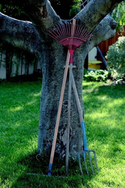 jardinage venelles